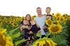 Breininger_sunflower_ 035