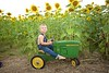 Breininger_sunflower_ 016