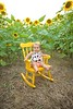 Clever_Sunflower_ 002