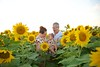 Clever_Sunflower_ 020