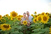 Clever_Sunflower_ 016