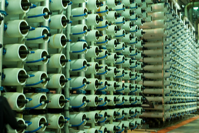 Racks of purification membranes.