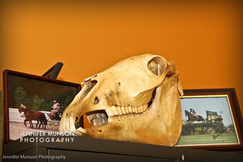 Office skull