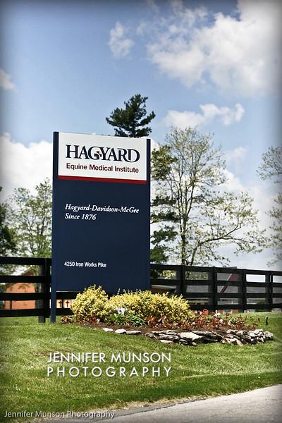 main hagyard sign