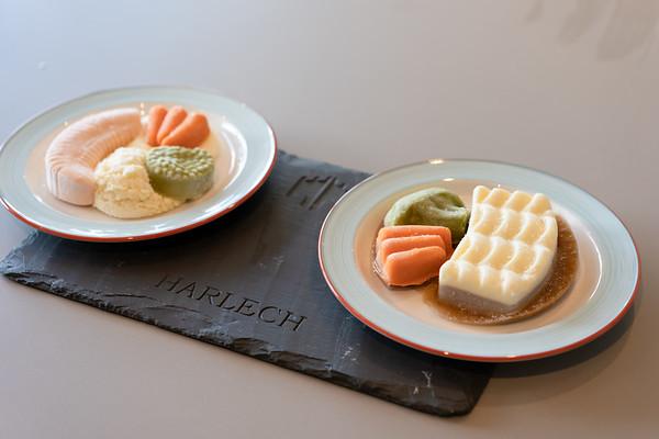 Harlech Food-304358