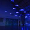 Mark-David Hosale, Homunculus Agora (h.a), 2013. Experimental Media, Interactive Sculpture. Photo: Will Pemulis