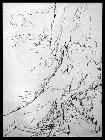 """""""Tree, Grand Canyon""""   (ink on paper)"""