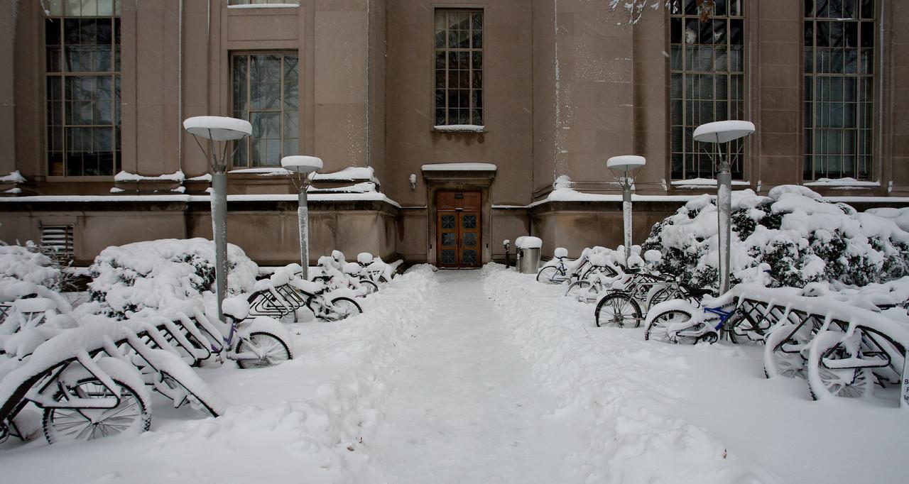 Snow Storm, Dec 27, 2010. Cambridge, Boston, MA.