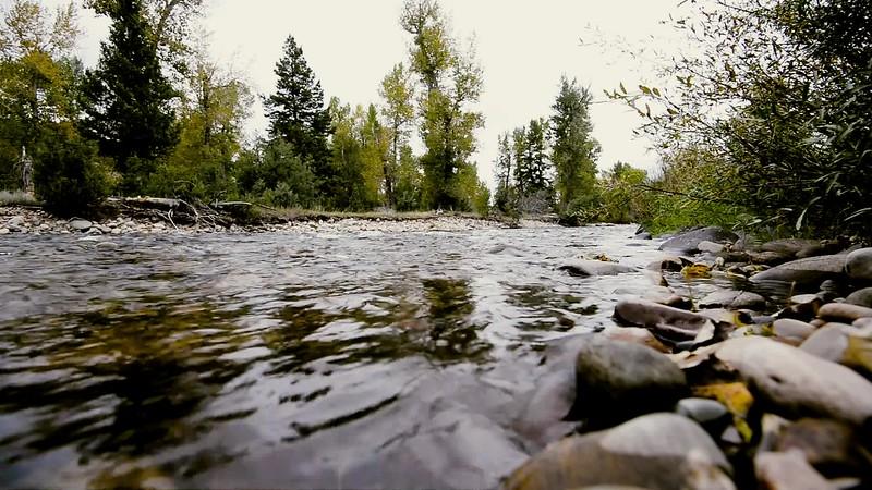 Montana_2019-River