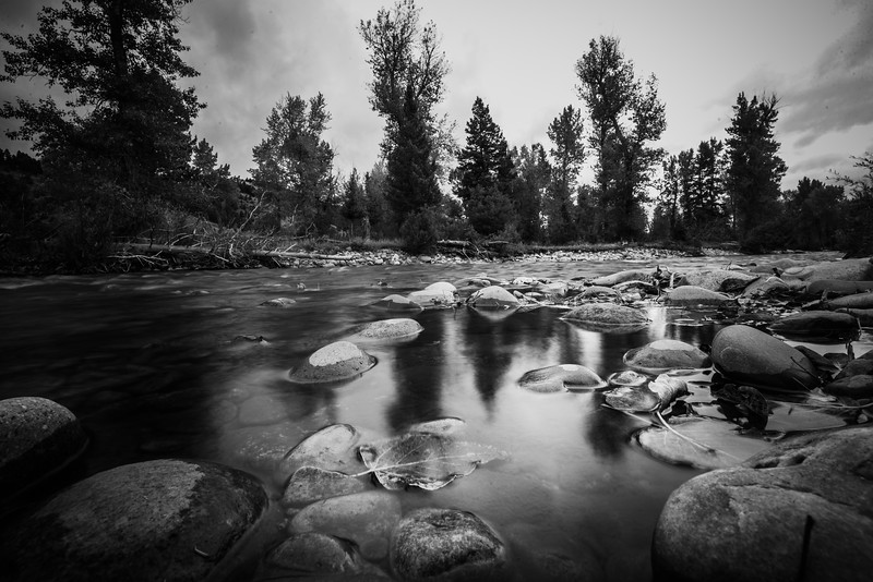 Montana_2019-0374-2