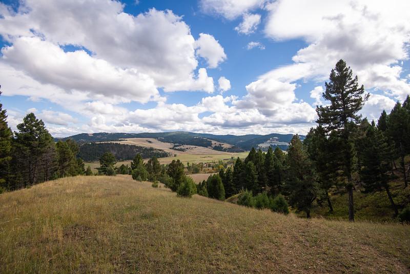 Montana_2019--2