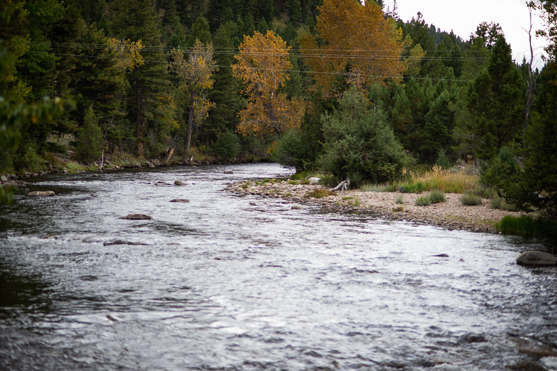 Montana_2019-0290