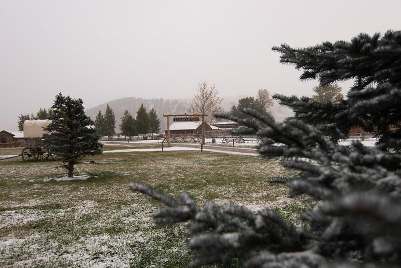 Montana_2019-0950
