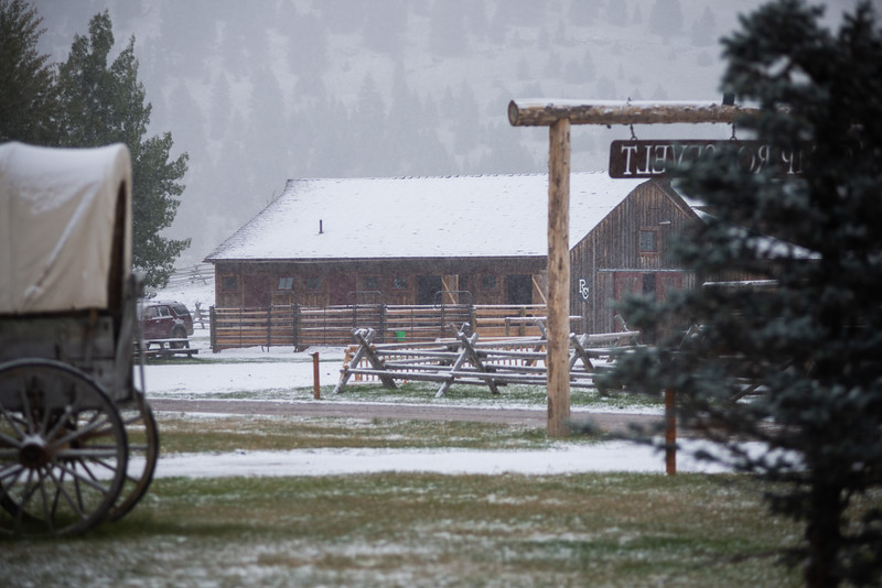 Montana_2019-0958