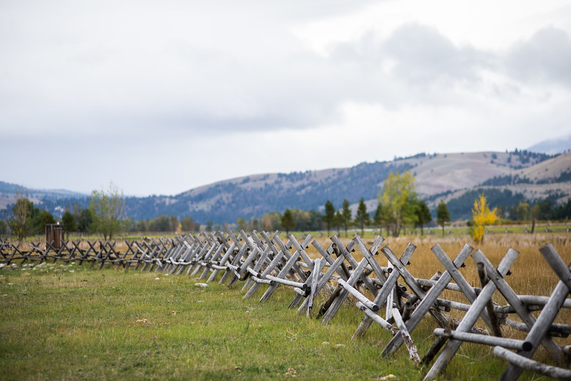 Montana_2019-0939