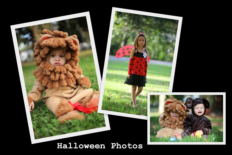 "So I'm sure your lil Trick-or-Treater  is the cutest in town....  <br /> and you wish you have GREAT photos to prove it!!!  <br />  <br /> Well here is your opportunity for a <br /> Halloween Short Shoot <br />   Oct. 26th 27th Nov. 2nd and 3rd from 3-5pm <br /> Halloween Photos in The Park  <br />  <br /> $40 ($25 per extra child) will get you a 20 min. ""Short"" Photo shoots~ <br /> and receive a 4x6 your favorite photo.<br />  Extra photos and prints will be available for purchase online~ <br /> Contact me for your appointment time and location in Roseville ~"