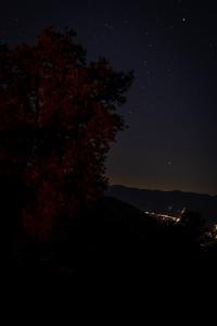 ALoraePhotography__20200717_58664