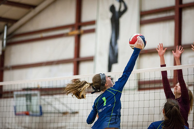 ALoraePhotography_SeattleVolleyball_20180210_5524