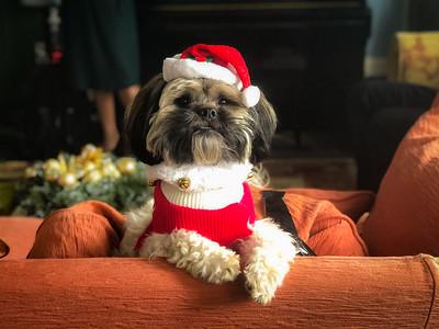 Feddie Christmas
