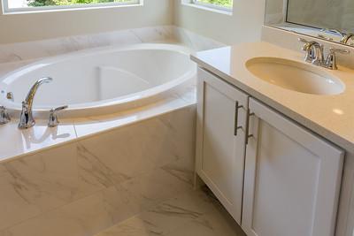 Lot 2 Owner's Bath, detail