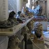 Hall of Animals (Vatican Zoo)