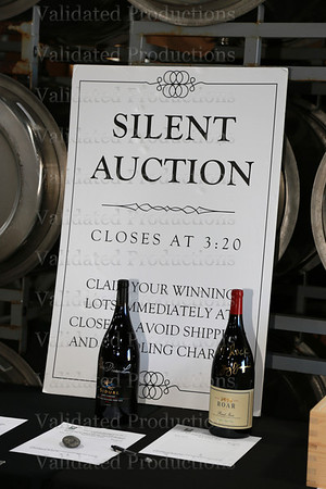 IMG_0049 auction
