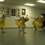 Dance 2009-2010