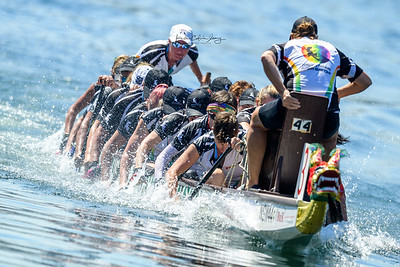 Dragon Boat Races Sydney Chinese New Year 2017