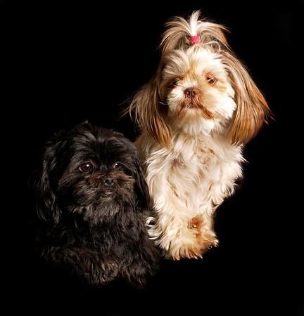 Max & his lifetime partner, Sussi.