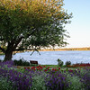 20120813 Lake Shawnee-0256-2