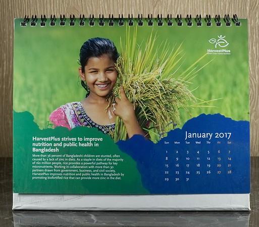 Calender Project Bangladesh