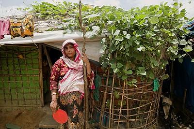 0699-UNICEF-RR-09-08-2018-sujanmap