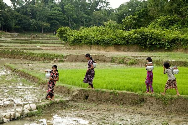 0270-UNICEF-RR-06-08-2018-sujanmap