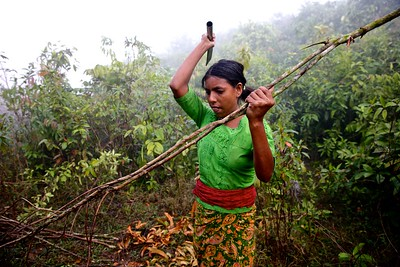 0075-0077 Chopping firewood at up hill jangle. Date- 20-12-2017 Photo: UNICEF / b.a.sujaN / Map