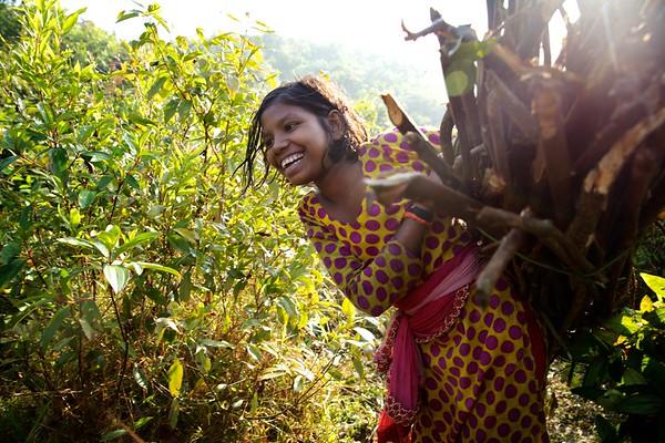 0054-0058 Sabiha-(11), Chopping firewood at uphill jungle. Date- 20-12-2017 Photo: UNICEF / b.a.sujaN / Map