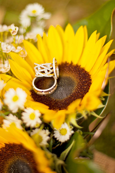 001_Shawn Rebcca_Wedding
