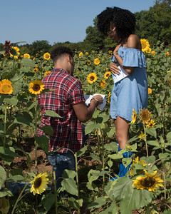 20170819_Miosha_and_Terence_Engagement_HJP_043