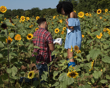 20170819_Miosha_and_Terence_Engagement_HJP_041