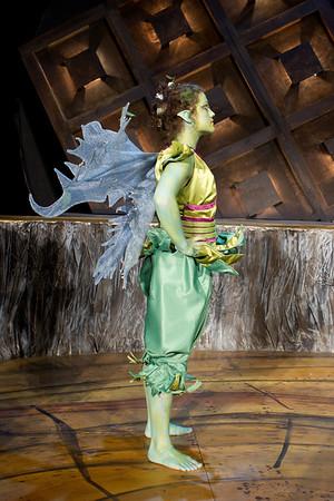 Midsummer Costume Shots-8280