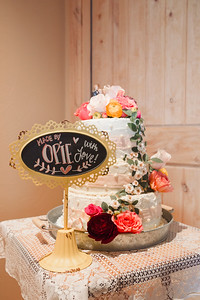 Olson_Wedding_011