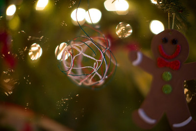 Brinkmann Christmas-0506