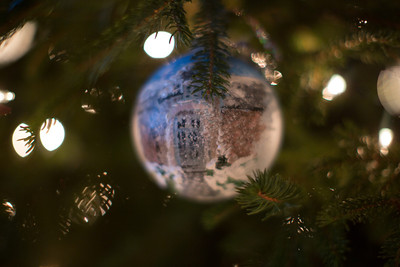 Brinkmann Christmas-0493