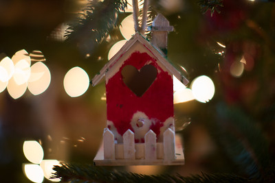Brinkmann Christmas-0494