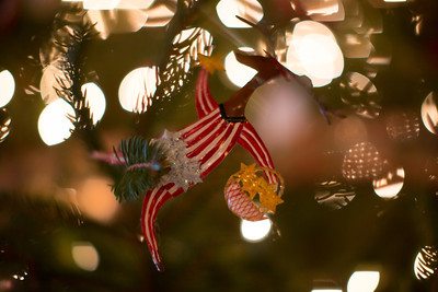 Brinkmann Christmas-0505