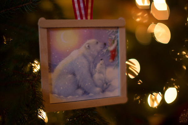 Brinkmann Christmas-0499