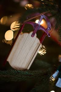 Brinkmann Christmas-0496