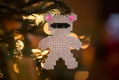 Brinkmann Christmas-0495