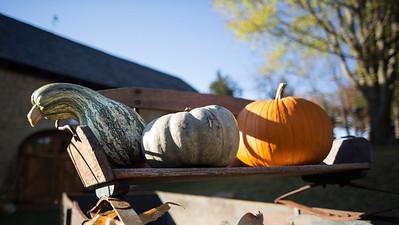 Brinkmann Halloween Party-35403