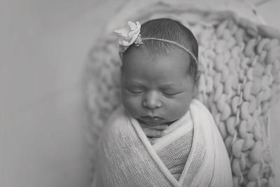 Kaylyn NewbornBW-13
