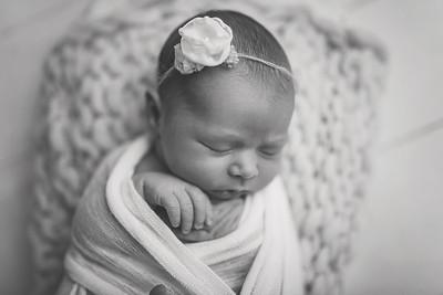Kaylyn NewbornBW-6